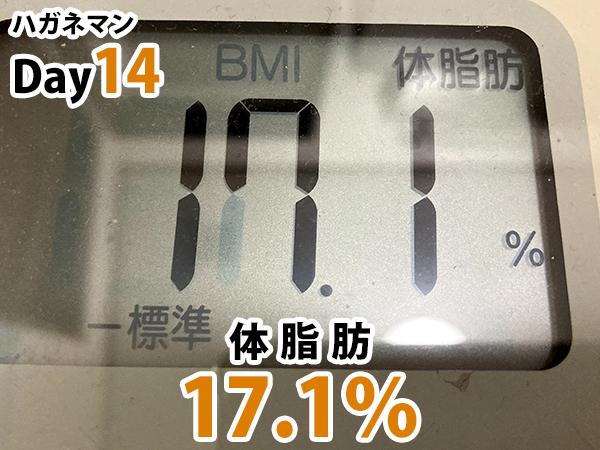 ハガネマン体脂肪3日目17.1%