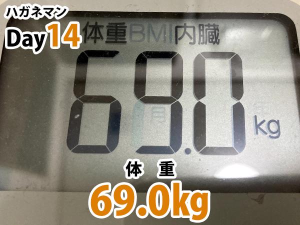 ハガネマン体重14日目69.0キログラム