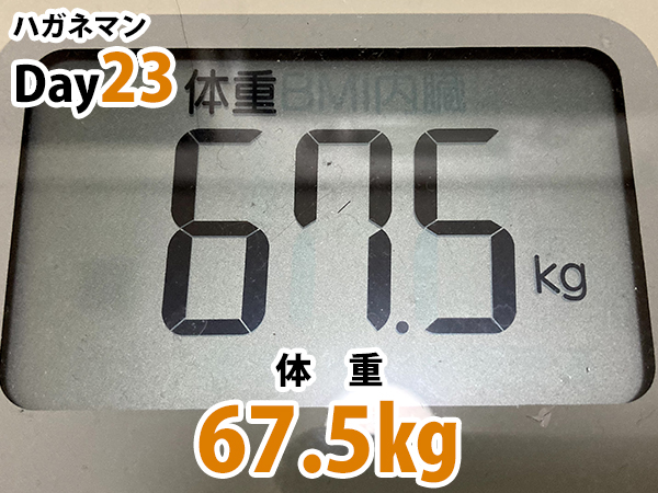 ハガネマン体重23日目67.5キログラム