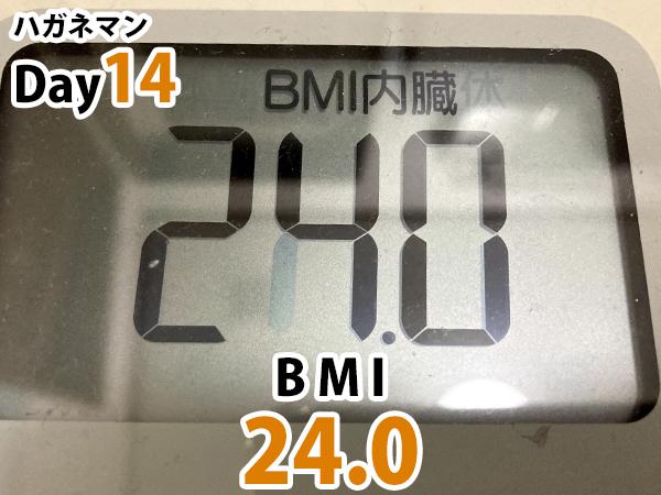 ハガネマン14日目BMI24.0