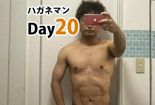 ハガネマンDay20日目