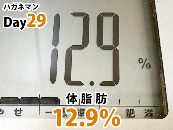 ハガネマンDay29日目体脂肪率12.9%