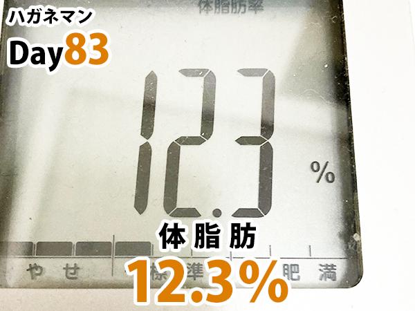ハガネマンDay83日目体脂肪率12.3%